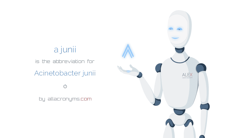 a junii is  the  abbreviation  for Acinetobacter junii